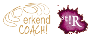 Haarlem Personal Life Coaching